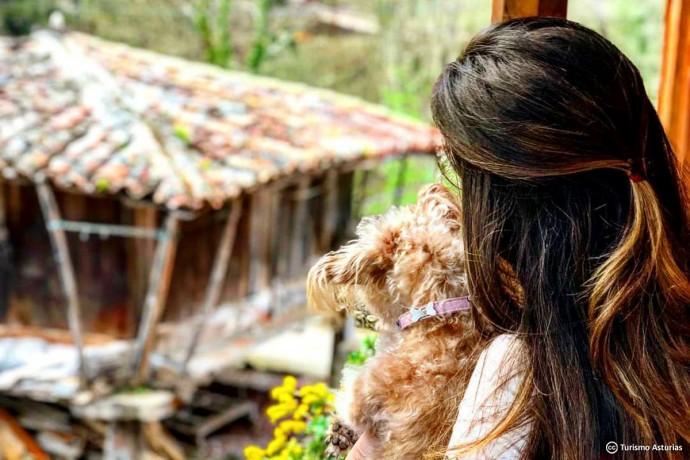 Asturias Pet Friendly